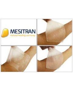 L-Mesitan Mesh 10cm x 10cm Pack Size 10